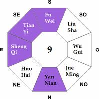 Feng Shui Ming Gua 9